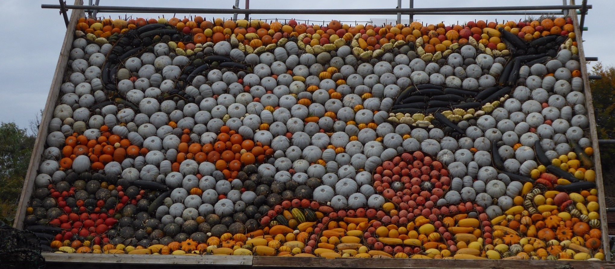 Pumpkin Event11